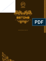Bstone 0106 REVIEW