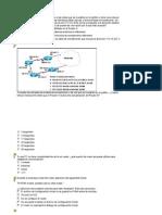 Examen Cisco 2 Final Parte 1