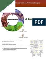E-Book Sustentabilidade É Bom Negócio DOM Strategy Partners 2011