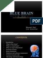 BLUE BRAIN Seminar by Bhaumik Patel