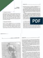 Dominica a SocioLinguistic Profile