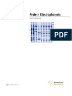 Protein Electrophoresis GE
