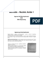 Methods – Nucleic Acids 1 [Read-Only]
