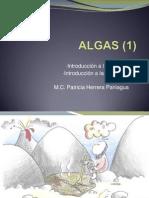 ALGAS I