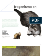 13 hiperestrogenismo