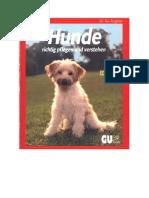 Hunde_richtig_pflegen_und_verstehen__Experten_Rat_f__r_die_artgerechte_Haltung__