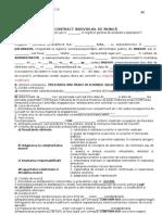 Contract Indiv de Munca Cu Criterii Evaluare