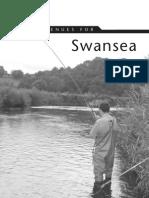 Swansea Area