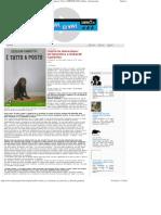 Contro La Vivisezione Un'Intervista a Deborah Gambetta