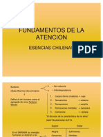 Fundament de la Atencion-esencias Chilenas