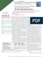 Deteccion de Nosema - Tecnica y Fotos