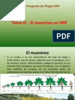 Muestreo MIP