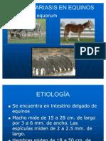 Parascariasis en Equinos