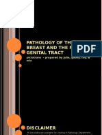 Pathology of the Breast and Male Genital Tract