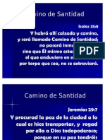 Camino_de_Santidad