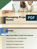 Managing Project Teams