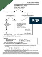 Renal Care Monitoring Diabetes