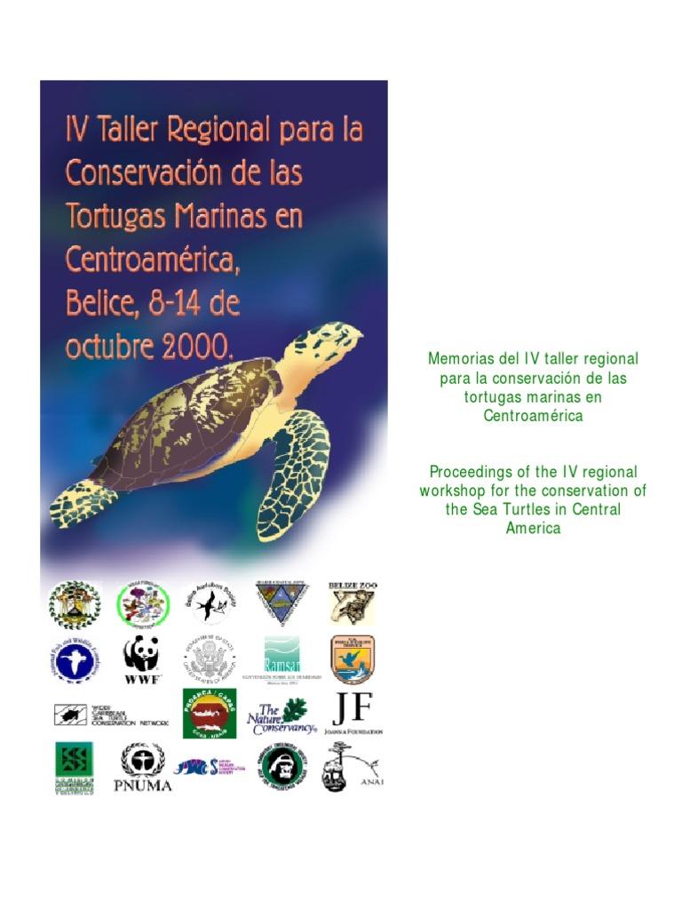 IV Taller Regional Para La Conservacion de Las Tortugas Marinas en ...