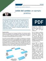20100628 Web Gestion de Cambio
