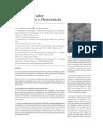 coagulacion-y-hemostasia