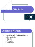 2 Utilization of Nutrients