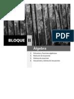 Tema03 Polinomios y Fracciones Algebraicas