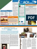 Niger - Newsletter nº 7 junio 2011