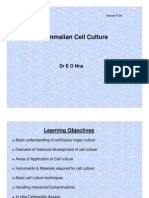 PM01-Mammalian Cell Culture
