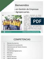 Informativo_TAEA