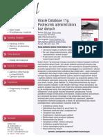Oracle Database 11g. Podręcznik administratora baz danych