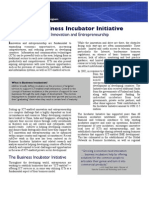 infoDev's Business Incubator Initiative