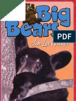 Those Big Bears by Jan Lee Wicker