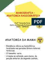 Anatomia Mama