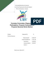 Concejos Comunales Diagnostico Participativo Proyecto rio y Proyecto Nacional Simon Bolivar