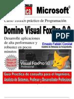 Experto en Visual Foxpro 9 SP2