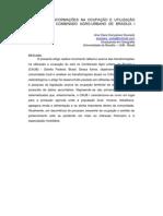 R-054 Ana Clara Goncalves Dourado