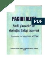 Ovidiu Moceanu-Coordonator PAGINI ALESE 2007