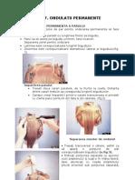 Cap.7 Ondulatii Permanente