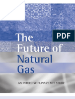 Natural Gas Report MIT