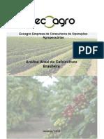 Microsoft Word - Análise da atual cafeicultura brasileira