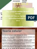 1.- Célula Vegetal