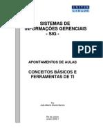 SIG Conceitos e Ferramentas de TI 2009[1].1 [1]