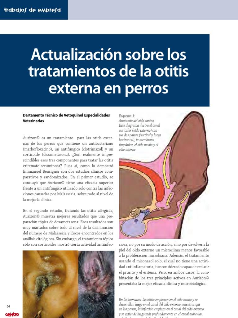 26 otitis externa