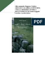 Introduzione di REGGIO CALABRIA E DINTORNI. VIAGGIO NELLA MEMORIA STORICA DELL'AREA DELLO STRETTO di Natale Zappalà