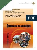 COMPENDIO_DE_ANTOLOGIAS 2011