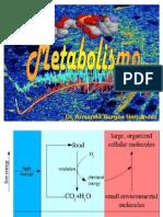 3Metabolismo-Glucólisis