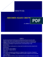 Abdomen Agudo Obstructivo y Perforativo