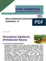 Perusahaan Agribisnis