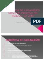 Audiencia de Juzgamiento -Nueva Ley Procesal del Trabajo - Dra. Geraldine Contreras Ramirez