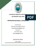 Multimedia, Tipologias y as